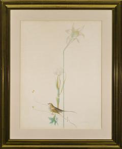 Joseph Stella Lily and Bird - 973614