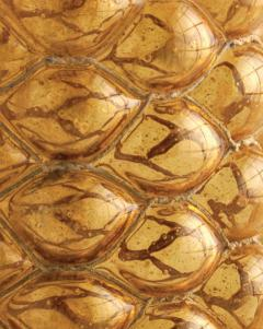 Judi Harvest Honey Vessels - 1168987