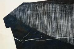 Julian Meredith Shockwave Fluke - 1796741