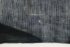 Julian Meredith Shockwave Fluke - 1796742
