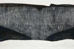 Julian Meredith Shockwave Fluke - 1796743