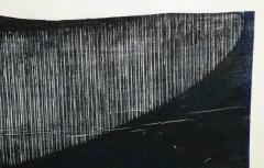 Julian Meredith Shockwave Fluke - 1796748