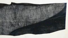Julian Meredith Shockwave Fluke - 1796750