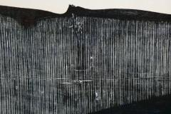 Julian Meredith Shockwave Fluke - 1796752