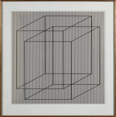 Julian Stanczak Superimposed in Light - 869992