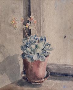 Kathleen Kay L Talbot Pink Bellflowers  - 1939852