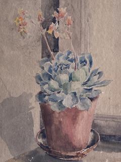 Kathleen Kay L Talbot Pink Bellflowers  - 1939866