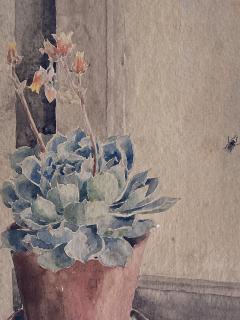 Kathleen Kay L Talbot Pink Bellflowers  - 1939880