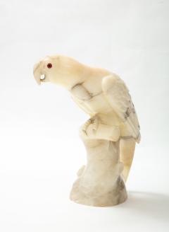 Large carved Alabaster Parrot  - 2112336