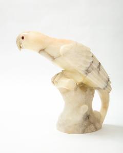 Large carved Alabaster Parrot  - 2112345