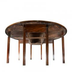 Long early George III Irish mahogany dining or wake table of exceptional colour - 1176035