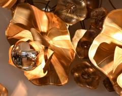 Lotus Lights - 1219364