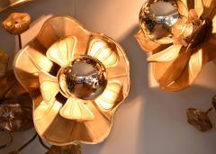 Lotus Lights - 1219366