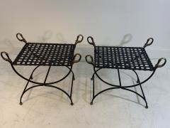 Maison Jansen MAISION JANSEN BLACKENED STEEL AND BRONZE SWAN HEAD BENCHES - 1032338