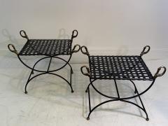 Maison Jansen MAISION JANSEN BLACKENED STEEL AND BRONZE SWAN HEAD BENCHES - 1032345