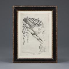 Mary Darly A group of twelve late 18th century satirical prints of women and their wigs - 930918