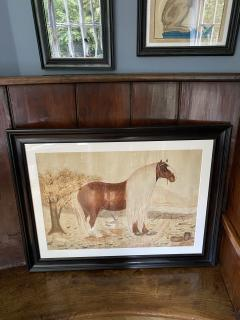 Massive British Watercolor of a Barge Horse Named Bob Signed M N Carr - 1618683