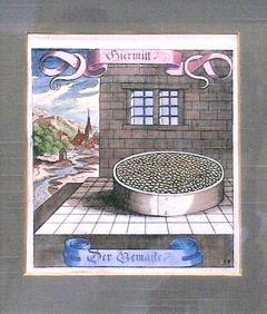Matth us Merian the Elder Beans - 1577379