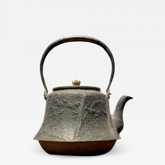 Meiji Era Cast Iron Tetsubin - 1766177