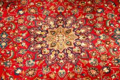 Mid 20th Century Hand Knotted Persian Rug - 1169194