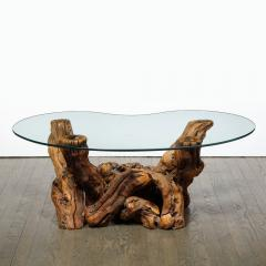 Mid Century Modern Burled Driftwood Cocktail Table with Amorphic Glass Top - 1950191