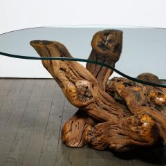 Mid Century Modern Burled Driftwood Cocktail Table with Amorphic Glass Top - 1950192