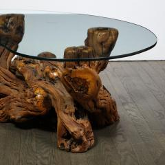 Mid Century Modern Burled Driftwood Cocktail Table with Amorphic Glass Top - 1950193