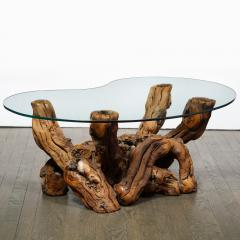 Mid Century Modern Burled Driftwood Cocktail Table with Amorphic Glass Top - 1950207