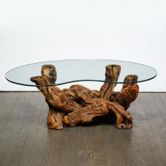 Mid Century Modern Burled Driftwood Cocktail Table with Amorphic Glass Top - 2004877