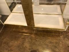Mid Century Modern Tall Lucite Mirror Gold Tone Metal Cabinet w Lighting - 613224