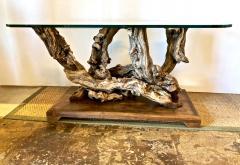 Mid Century Root Table - 1374625