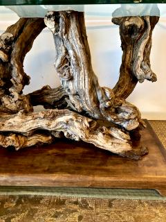 Mid Century Root Table - 1374626