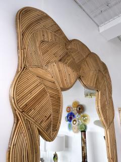 Mirror Rattan Palm Tree Braided Leaf France 1980s - 2006179