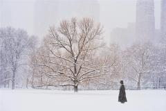 Mitchell Funk Man With Top Hat In Central Park During Snowstorm - 2095417