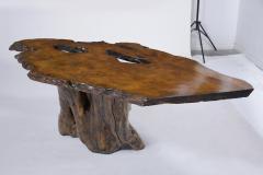 Organic Walnut Tree Trunk Freeform Table - 1988065