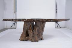 Organic Walnut Tree Trunk Freeform Table - 1988069