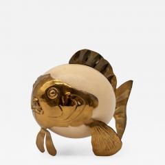 Ostrich Egg Blowfish - 1670493