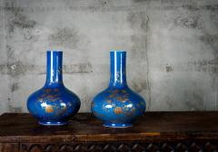 POWDER BLUE CHINESE VASES - 691192