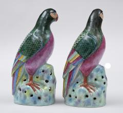 Pair Chinese Famille Rose Parrots - 267178