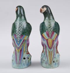 Pair Chinese Famille Rose Parrots - 267181