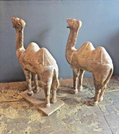 Pair Large Antique Chinese Tang Style Carved Camels - 1439300