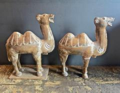 Pair Large Antique Chinese Tang Style Carved Camels - 1439303