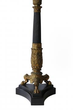 Pair of 19th Century Charles X Bronze Dor Candelabra Lamps - 1040840