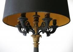 Pair of 19th Century Charles X Bronze Dor Candelabra Lamps - 1040843