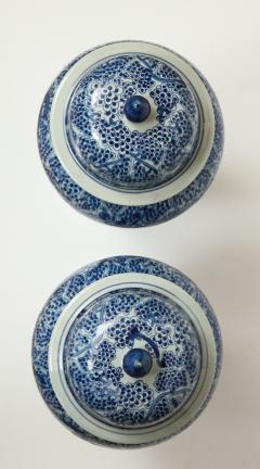 Pair of Chinese Blue and White Jars with Lids - 1311251