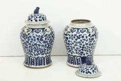 Pair of Chinese Export Jars with Lids - 848356
