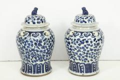Pair of Chinese Export Jars with Lids - 848364