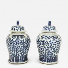 Pair of Chinese Export Jars with Lids - 850461