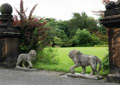 Pair of English Large Cast Stone Medici Lions - 1965014
