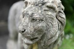Pair of English Large Cast Stone Medici Lions - 1965053